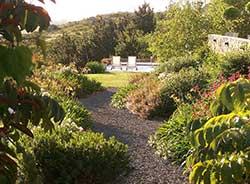 Jardines institucionales: son un lindo desafio entre estética y funcionalidad.
