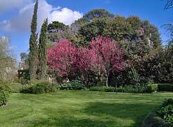 Jardines privados: expresan la singularidad del sitio y la personalidad de los propietarios. Cada jardín es una obra de arte en si mismo y manifiesta su propia identidad.