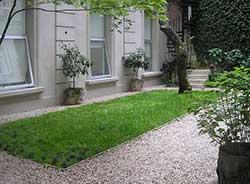 Patios urbanos: Pequeños oasis posibles en el cemento